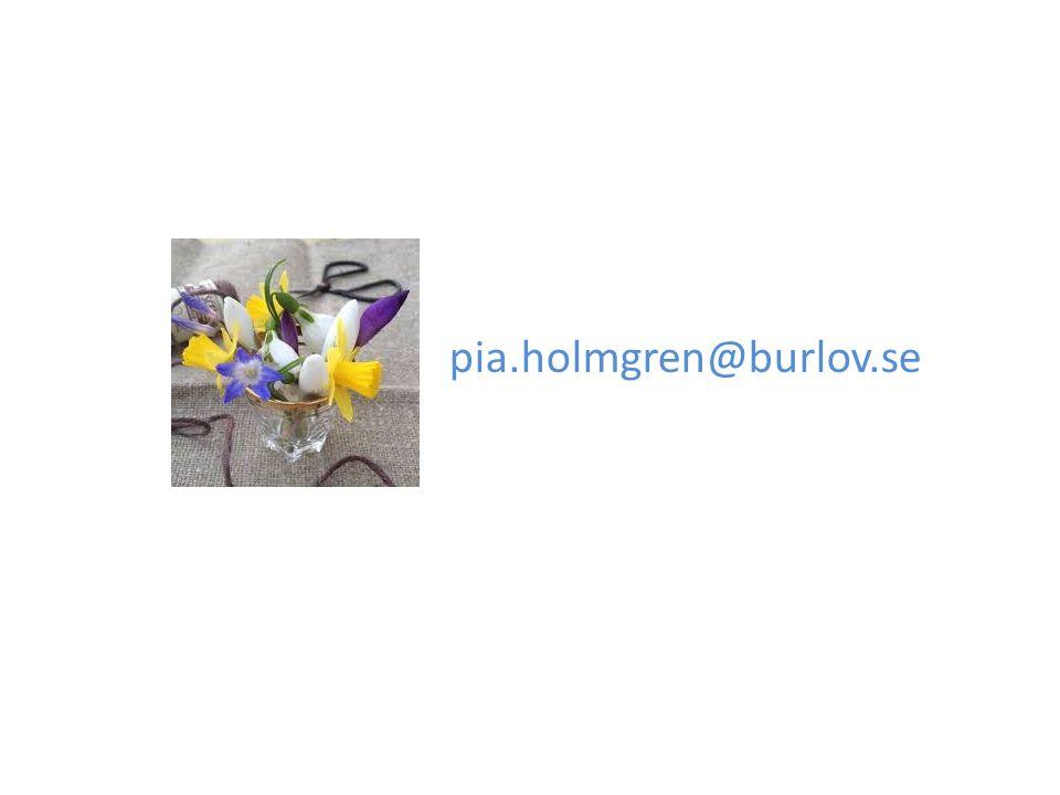 pia.holmgren@burlov.se