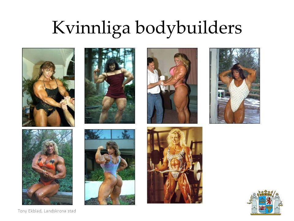Tony Ekblad, Landskrona stad Kvinnliga bodybuilders