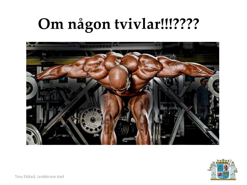 Tony Ekblad, Landskrona stad Om någon tvivlar!!!