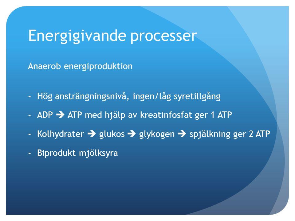 Energigivande processer Anaerob energiproduktion -Hög ansträngningsnivå, ingen/låg syretillgång -ADP  ATP med hjälp av kreatinfosfat ger 1 ATP -Kolhy