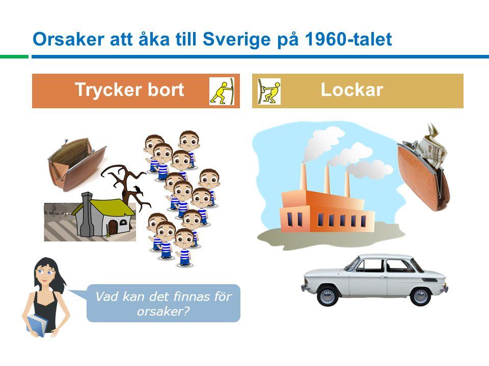 Orsaker att åka till Sverige på 1960-talet Vad kan det finnas för orsaker? Trycker bort Lockar
