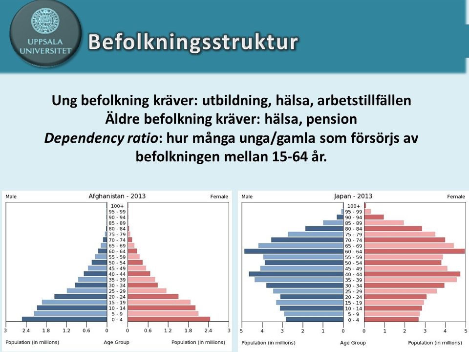Ung befolkning kräver: utbildning, hälsa, arbetstillfällen Äldre befolkning kräver: hälsa, pension Dependency ratio: hur många unga/gamla som försörjs av befolkningen mellan 15-64 år.