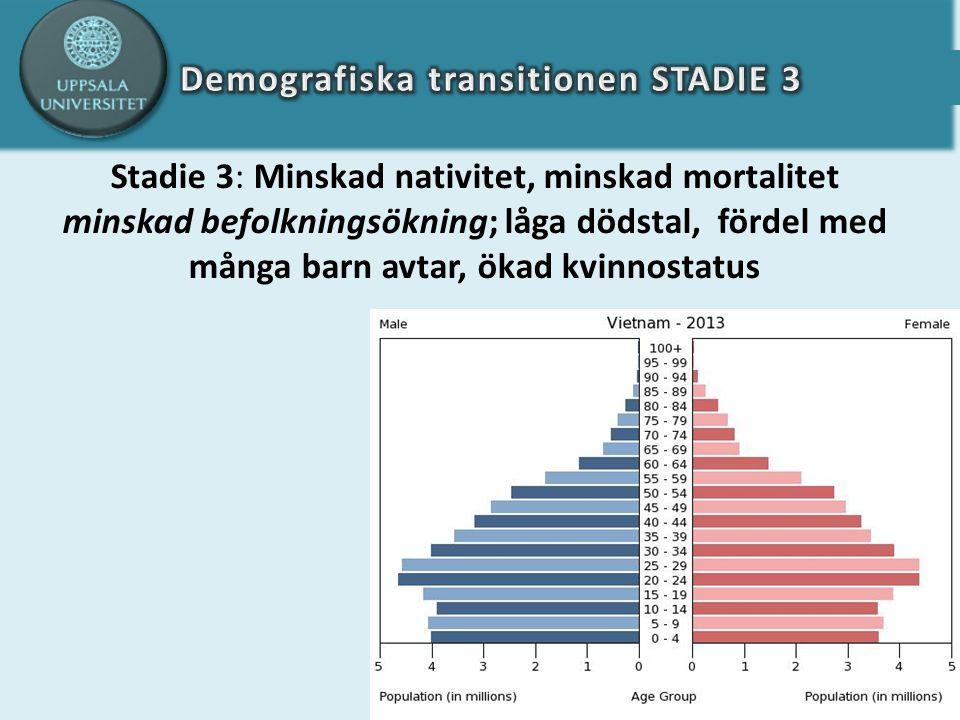 Stadie 3: Minskad nativitet, minskad mortalitet minskad befolkningsökning; låga dödstal, fördel med många barn avtar, ökad kvinnostatus