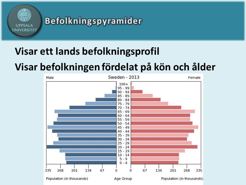 Visar ett lands befolkningsprofil Visar befolkningen fördelat på kön och ålder