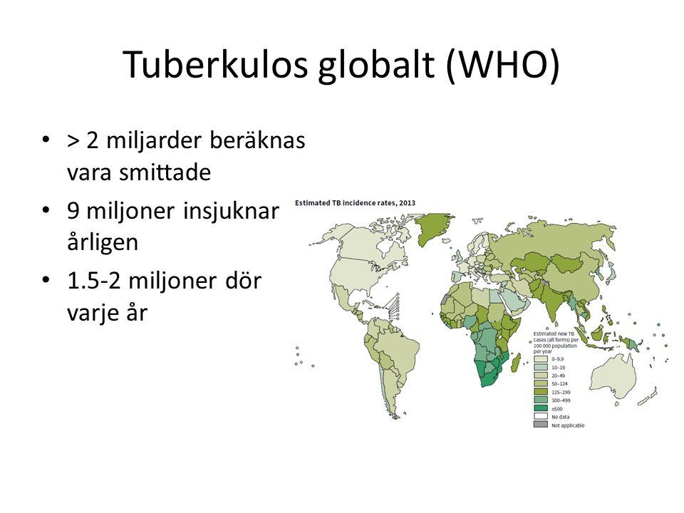 Tuberkulos globalt (WHO) > 2 miljarder beräknas vara smittade 9 miljoner insjuknar årligen 1.5-2 miljoner dör varje år