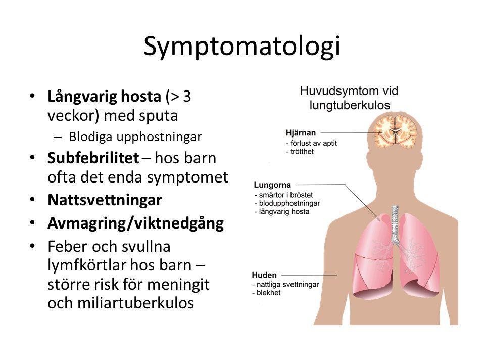 Symptomatologi Långvarig hosta (> 3 veckor) med sputa – Blodiga upphostningar Subfebrilitet – hos barn ofta det enda symptomet Nattsvettningar Avmagring/viktnedgång Feber och svullna lymfkörtlar hos barn – större risk för meningit och miliartuberkulos