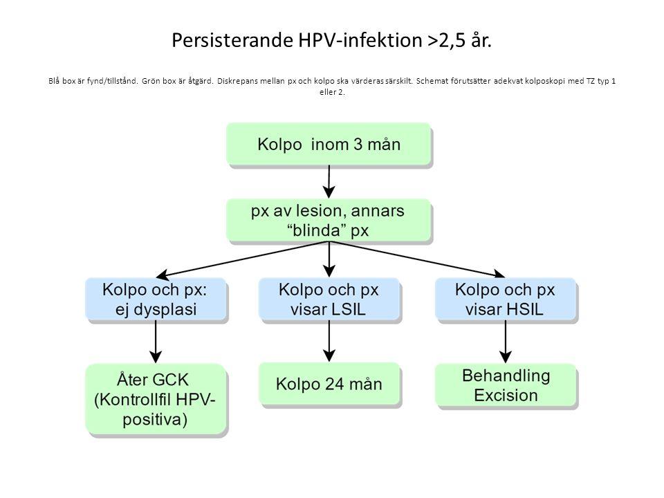 Persisterande HPV-infektion >2,5 år. Blå box är fynd/tillstånd. Grön box är åtgärd. Diskrepans mellan px och kolpo ska värderas särskilt. Schemat föru