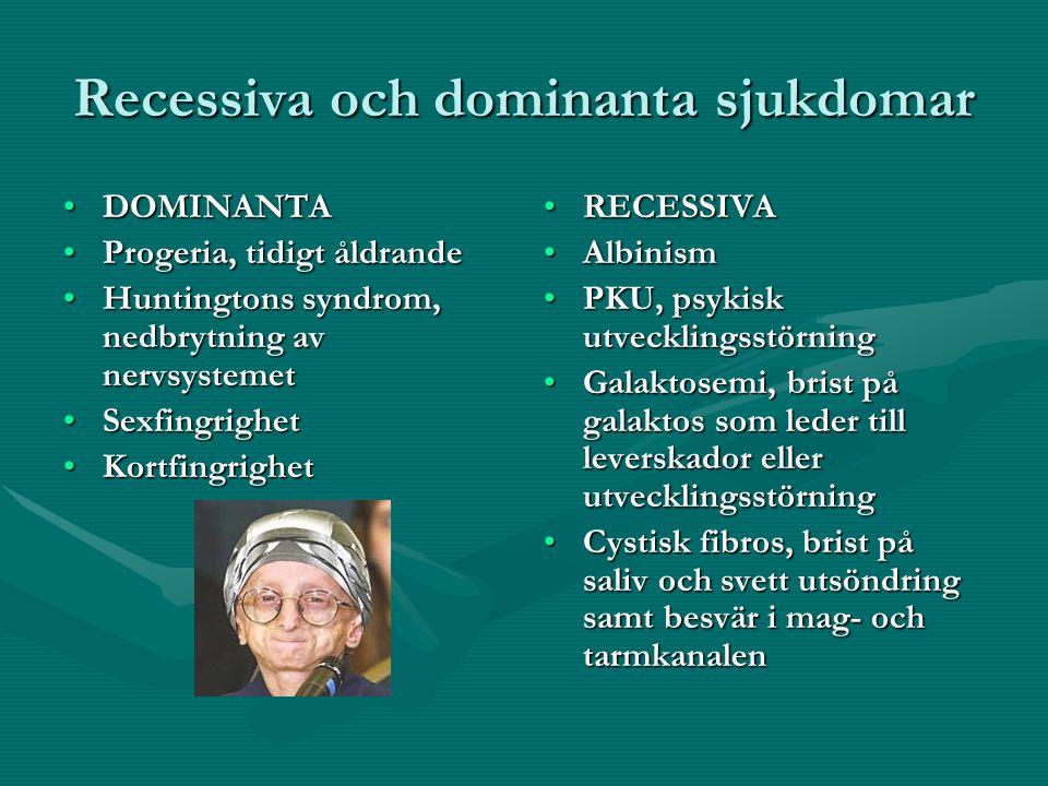 Recessiva och dominanta sjukdomar DOMINANTADOMINANTA Progeria, tidigt åldrandeProgeria, tidigt åldrande Huntingtons syndrom, nedbrytning av nervsystemetHuntingtons syndrom, nedbrytning av nervsystemet SexfingrighetSexfingrighet KortfingrighetKortfingrighet RECESSIVA Albinism PKU, psykisk utvecklingsstörning Galaktosemi, brist på galaktos som leder till leverskador eller utvecklingsstörning Cystisk fibros, brist på saliv och svett utsöndring samt besvär i mag- och tarmkanalen