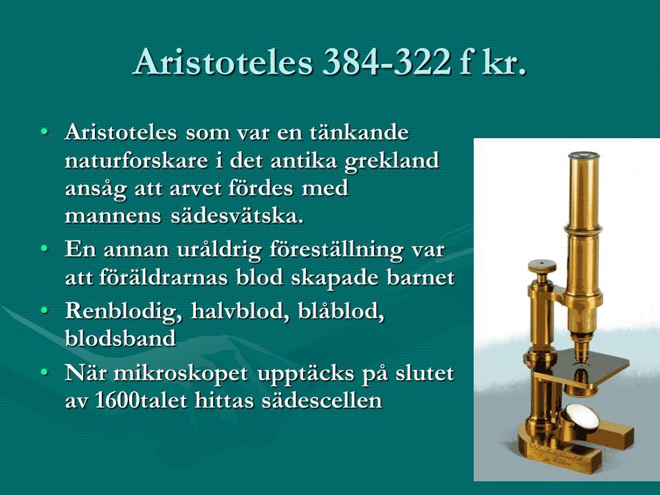 Aristoteles 384-322 f kr.
