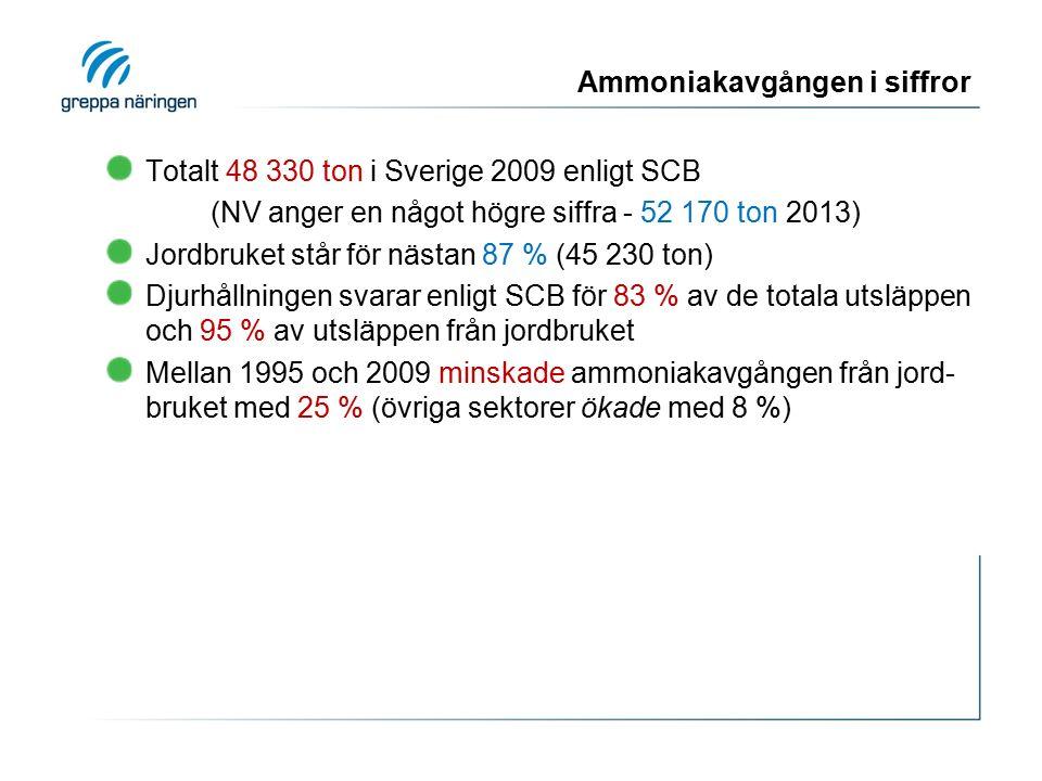 Ammoniakavgången i siffror Totalt 48 330 ton i Sverige 2009 enligt SCB (NV anger en något högre siffra - 52 170 ton 2013) Jordbruket står för nästan 87 % (45 230 ton) Djurhållningen svarar enligt SCB för 83 % av de totala utsläppen och 95 % av utsläppen från jordbruket Mellan 1995 och 2009 minskade ammoniakavgången från jord- bruket med 25 % (övriga sektorer ökade med 8 %)