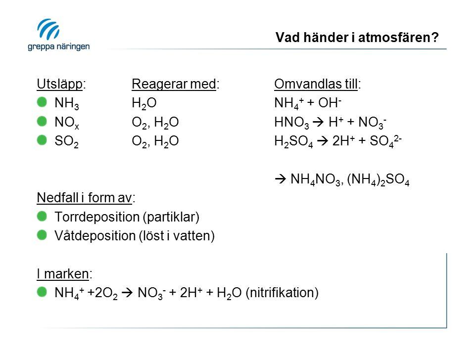 Vad händer i atmosfären? Utsläpp:Reagerar med:Omvandlas till: NH 3 H 2 ONH 4 + + OH - NO x O 2, H 2 OHNO 3  H + + NO 3 - SO 2 O 2, H 2 O H 2 SO 4  2