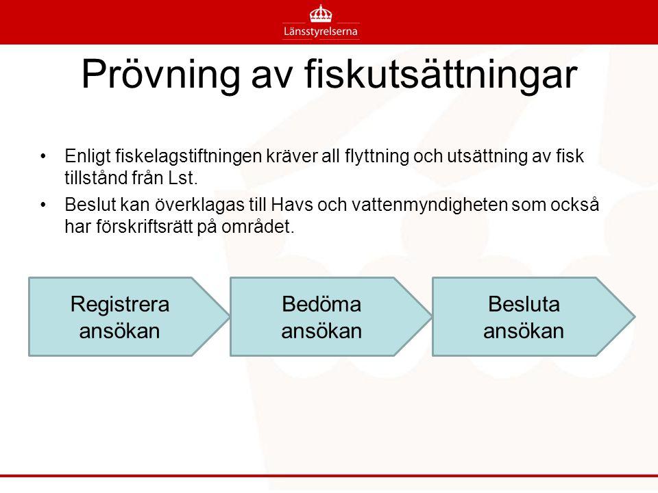 Prövning av fiskutsättningar Registrera ansökan Bedöma ansökan Besluta ansökan Enligt fiskelagstiftningen kräver all flyttning och utsättning av fisk tillstånd från Lst.