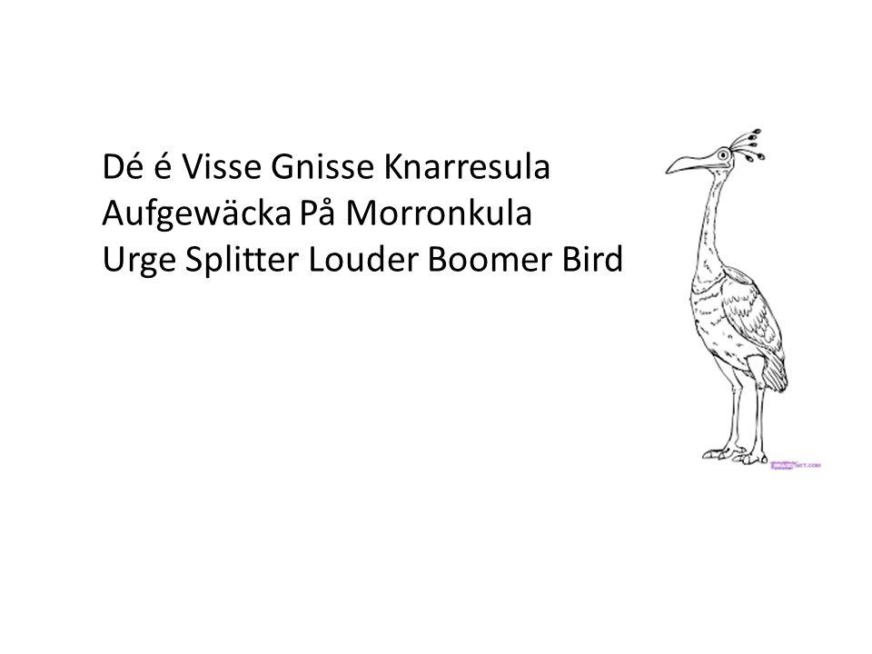 Dé é Visse Gnisse Knarresula Aufgewäcka På Morronkula Urge Splitter Louder Boomer Bird