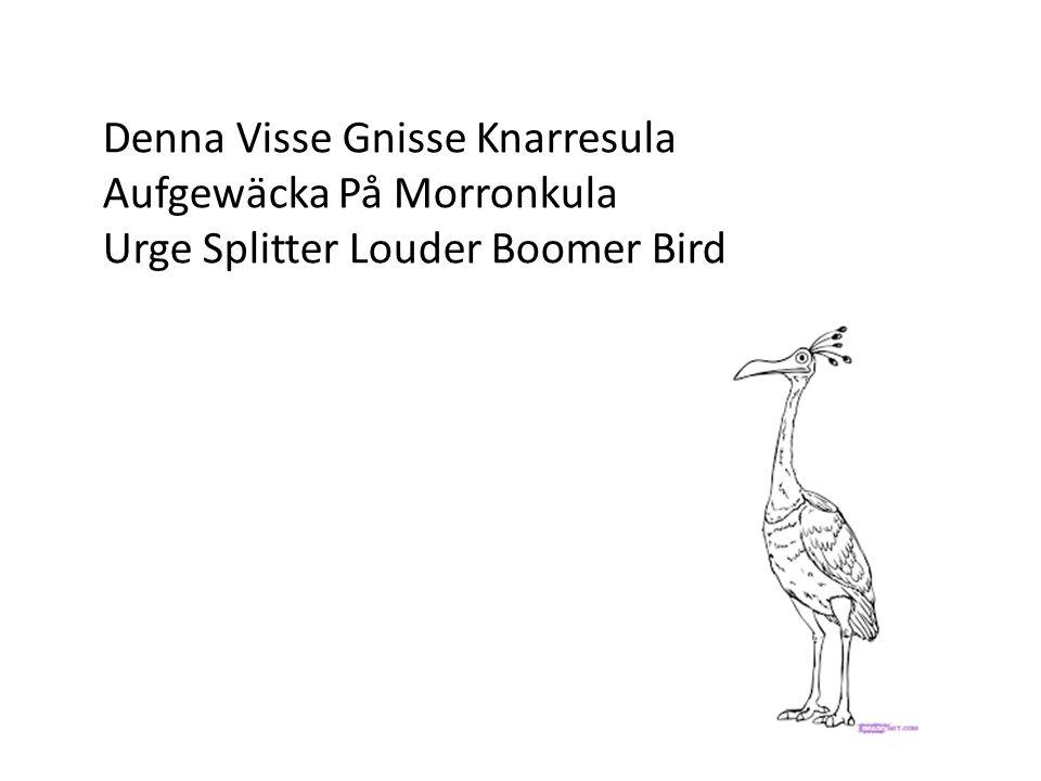 Denna Visse Gnisse Knarresula Aufgewäcka På Morronkula Urge Splitter Louder Boomer Bird