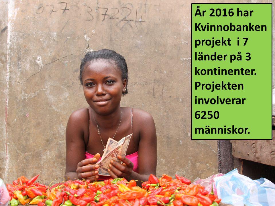 År 2016 har Kvinnobanken projekt i 7 länder på 3 kontinenter. Projekten involverar 6250 människor.