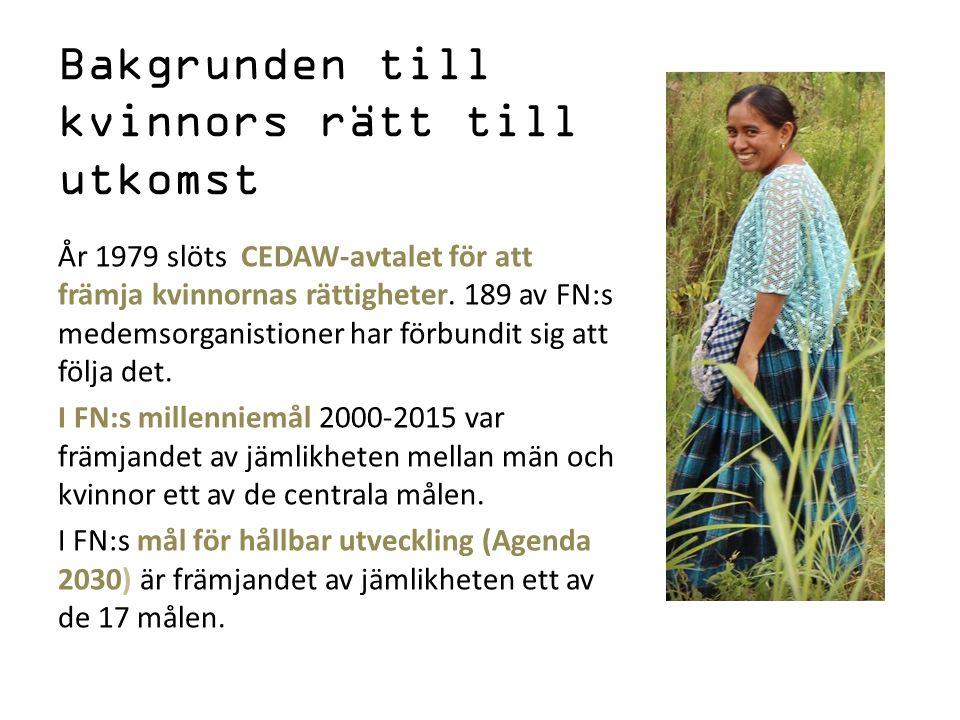 En del av FN:s millenniemål uppnåddes Allt fler flickor går i skolan.