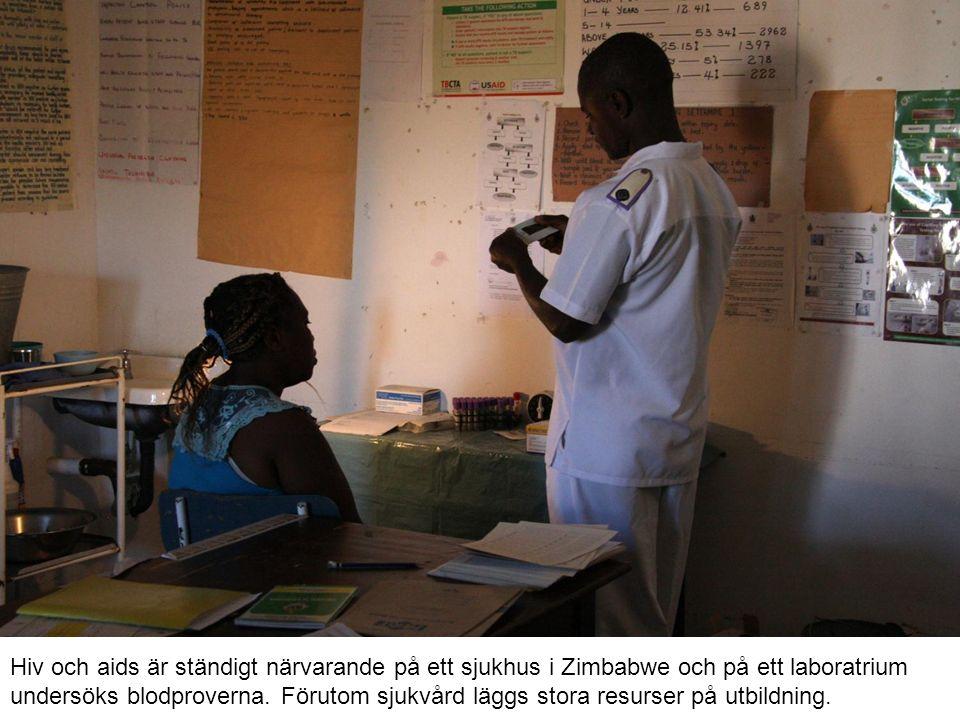 Hiv och aids är ständigt närvarande på ett sjukhus i Zimbabwe och på ett laboratrium undersöks blodproverna. Förutom sjukvård läggs stora resurser på