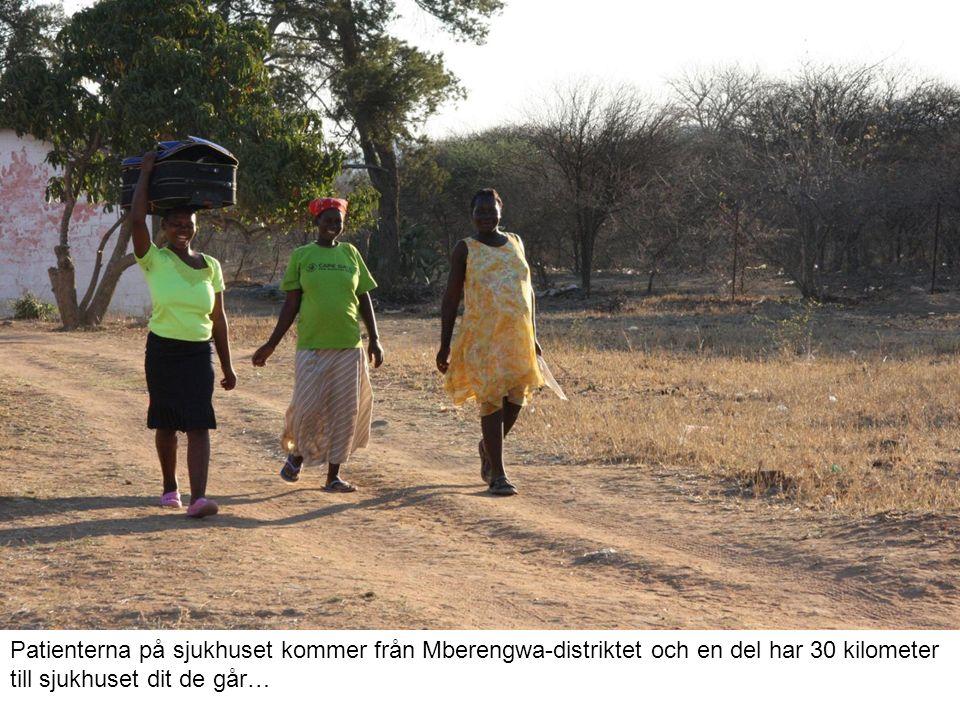 Patienterna på sjukhuset kommer från Mberengwa-distriktet och en del har 30 kilometer till sjukhuset dit de går…
