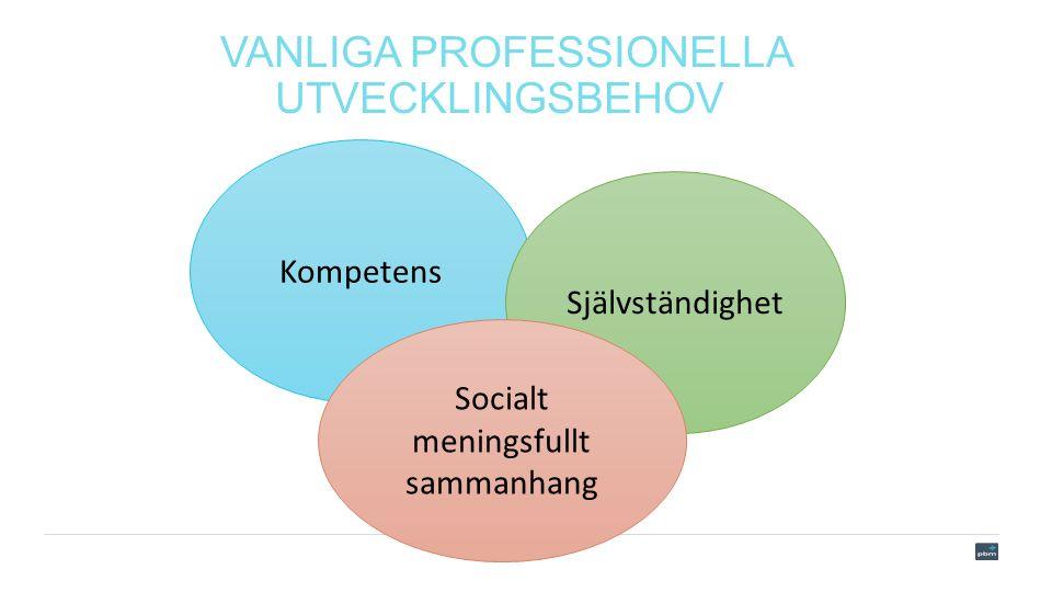 VANLIGA PROFESSIONELLA UTVECKLINGSBEHOV Kompetens Självständighet Socialt meningsfullt sammanhang