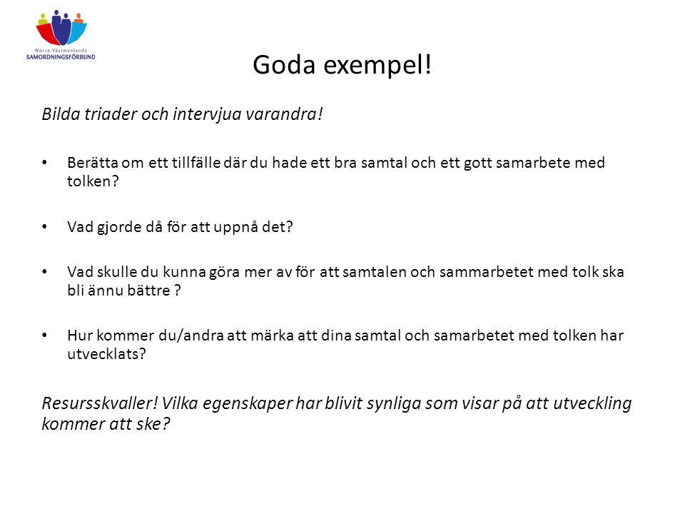 Goda exempel! Bilda triader och intervjua varandra! Berätta om ett tillfälle där du hade ett bra samtal och ett gott samarbete med tolken? Vad gjorde