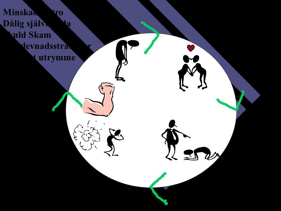 Smekmånad Ökad kontroll Upptrappning tortyr Minskad tilltro Dålig självkänsla Skuld Skam Överlevnadsstrategier Minskat utrymme Slaget