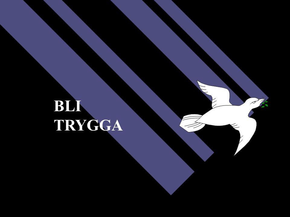 BLI TRYGGA