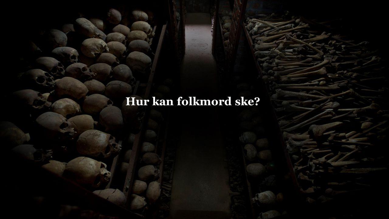 Orsakerna till ett folkmord går oftast att hitta både hos individ, grupp, samhällsnivå och internationell nivå.