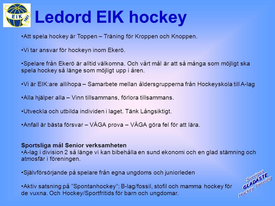 Ledord EIK hockey Att spela hockey är Toppen – Träning för Kroppen och Knoppen.