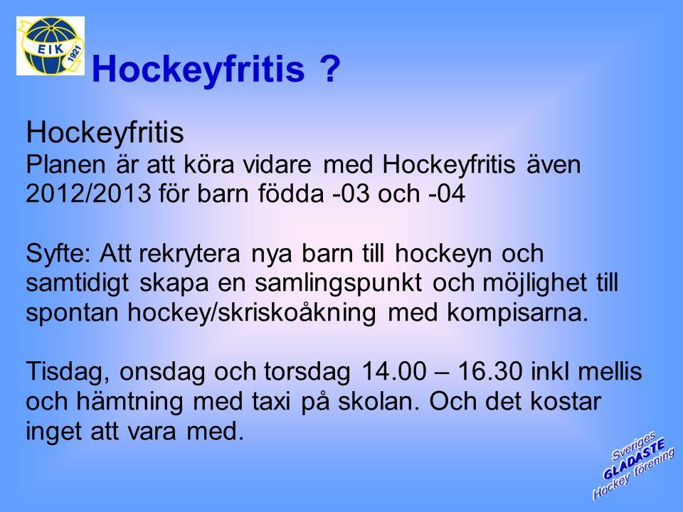 Hockeyfritis .
