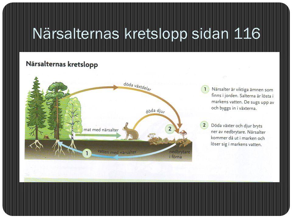 Närsalter / näring / gödning /gödsel