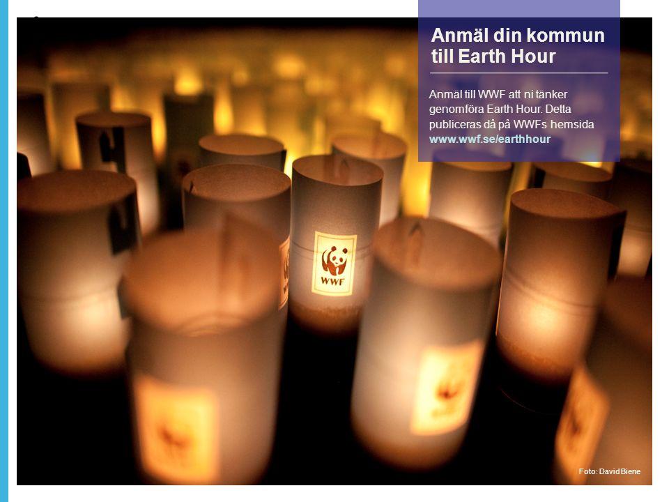 Anmäl din kommun till Earth Hour Anmäl till WWF att ni tänker genomföra Earth Hour.