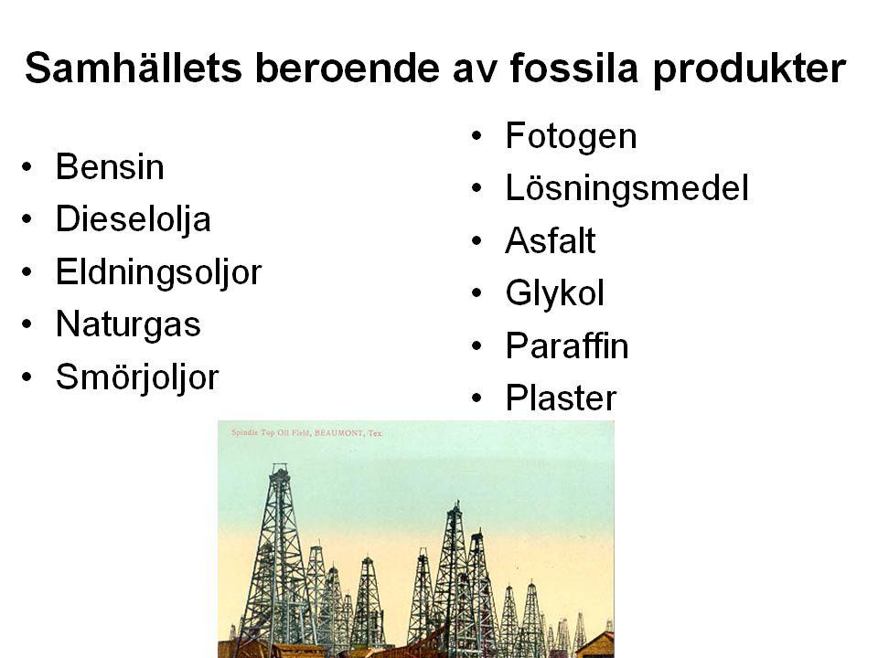 Fem generationer 1880 2080190019201940196019802000202020402060 T-Fordens tidevarv börjar Världskrig där olja hade betydelse Ekonomisk tillväxt tack vare olja 1:a oljekrisen Allmänt miljö- medvetande börjar gry Dieselfordon börjar debatteras Oljan slut?