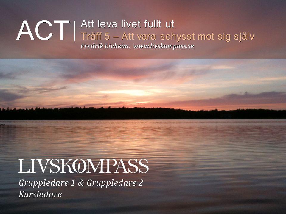 ACT Att leva livet fullt ut Träff 5 – Att vara schysst mot sig själv Fredrik Livheim.