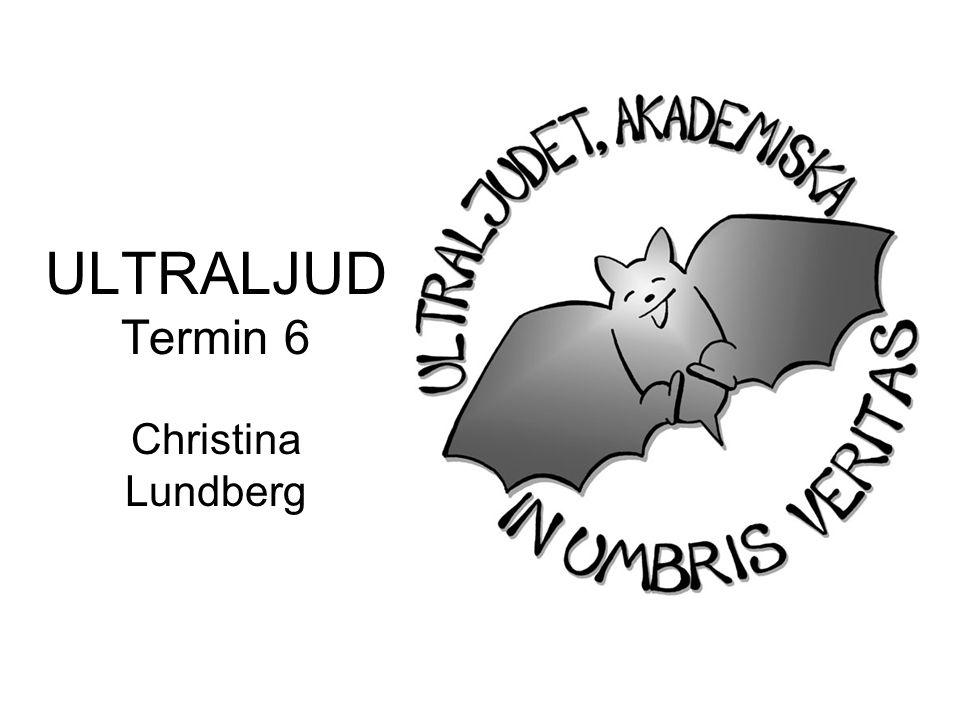 ULTRALJUD Termin 6 Christina Lundberg