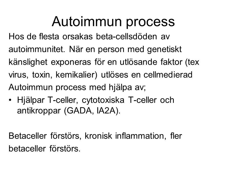 Autoimmun process Hos de flesta orsakas beta-cellsdöden av autoimmunitet.