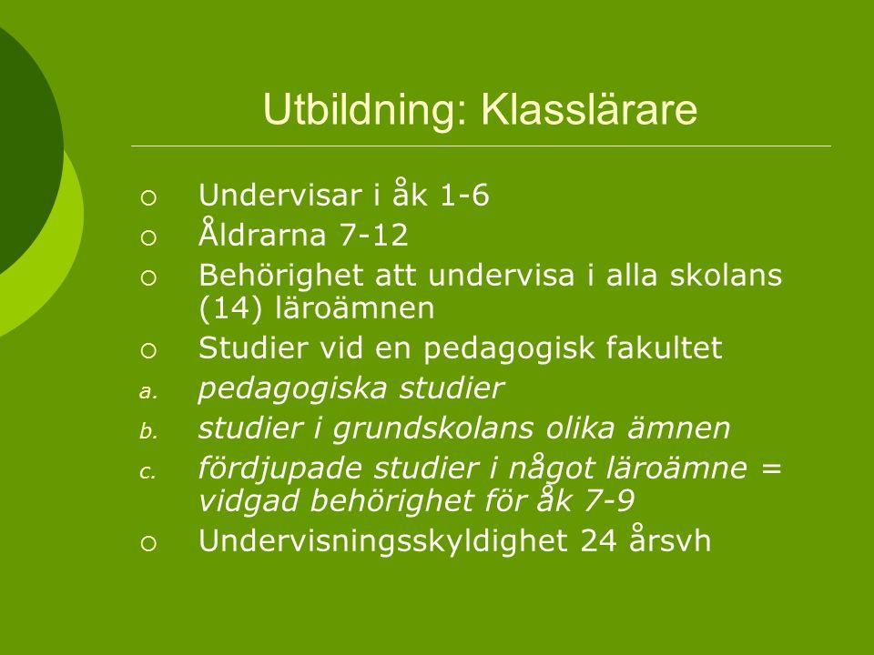 Utbildning: Klasslärare  Undervisar i åk 1-6  Åldrarna 7-12  Behörighet att undervisa i alla skolans (14) läroämnen  Studier vid en pedagogisk fak