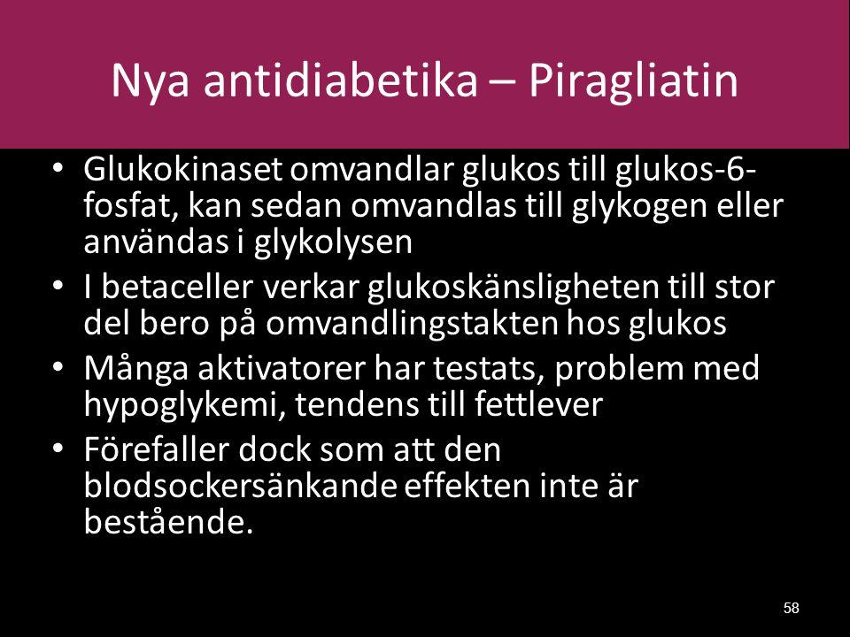 Nya antidiabetika – Piragliatin Glukokinaset omvandlar glukos till glukos-6- fosfat, kan sedan omvandlas till glykogen eller användas i glykolysen I betaceller verkar glukoskänsligheten till stor del bero på omvandlingstakten hos glukos Många aktivatorer har testats, problem med hypoglykemi, tendens till fettlever Förefaller dock som att den blodsockersänkande effekten inte är bestående.