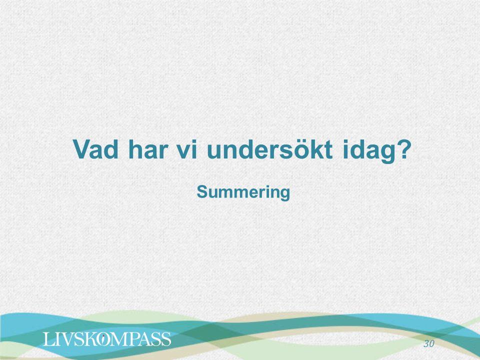 30 Vad har vi undersökt idag Summering