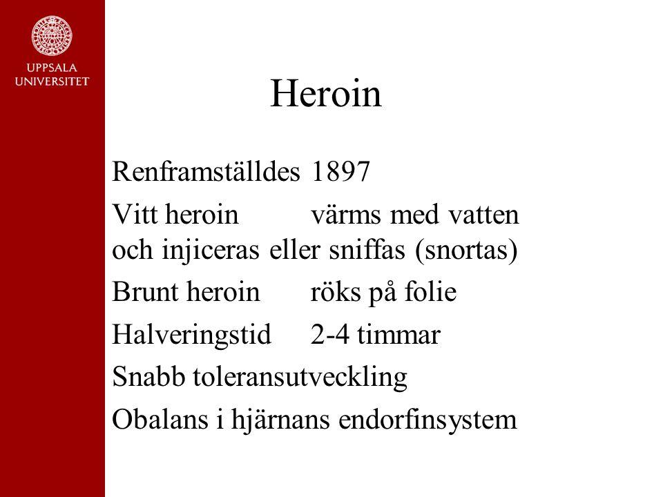 Heroin Renframställdes 1897 Vitt heroinvärms med vatten och injiceras eller sniffas (snortas) Brunt heroinröks på folie Halveringstid 2-4 timmar Snabb toleransutveckling Obalans i hjärnans endorfinsystem