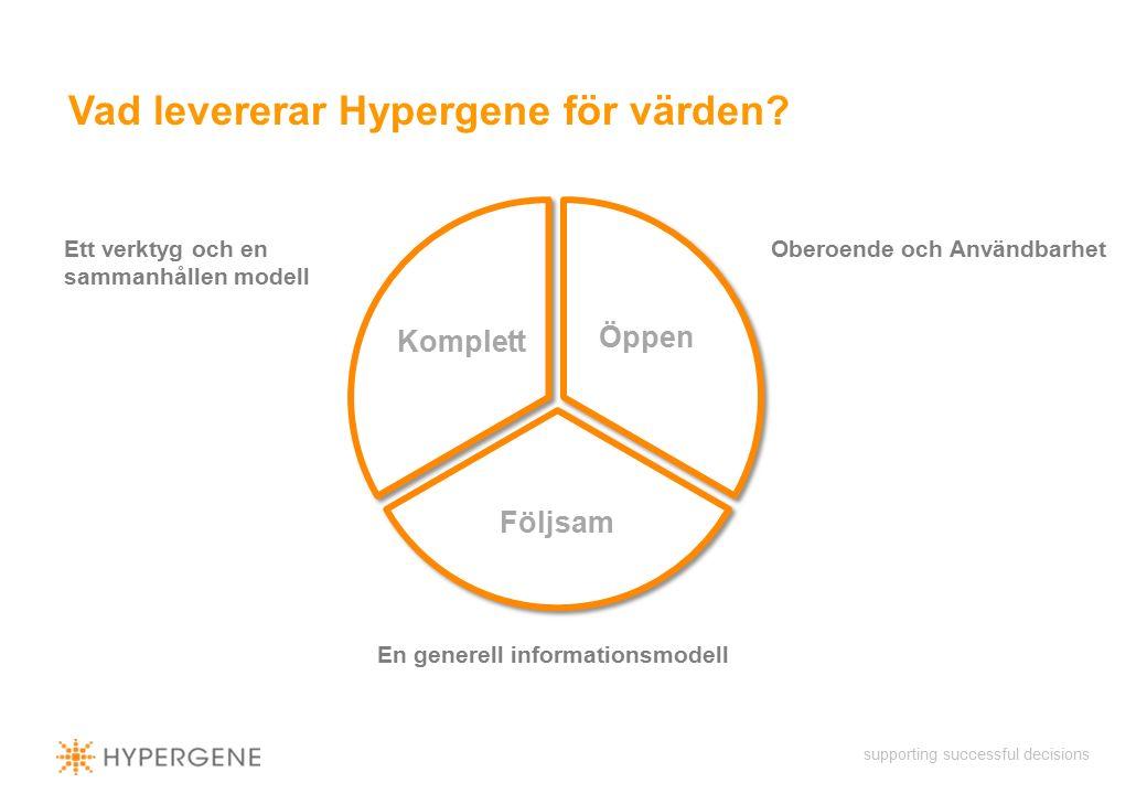 supporting successful decisions Vad levererar Hypergene för värden.