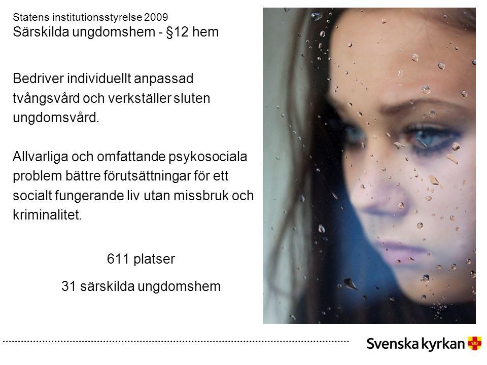Statens institutionsstyrelse 2009 Särskilda ungdomshem - §12 hem Bedriver individuellt anpassad tvångsvård och verkställer sluten ungdomsvård.