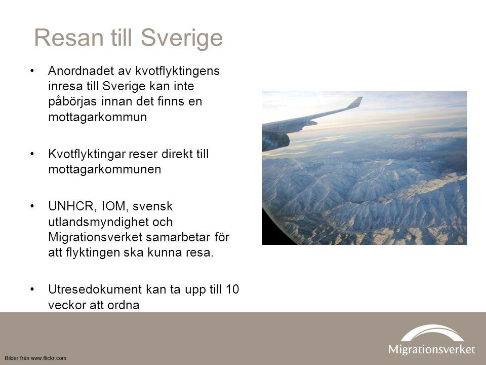Resan till Sverige Anordnadet av kvotflyktingens inresa till Sverige kan inte påbörjas innan det finns en mottagarkommun Kvotflyktingar reser direkt till mottagarkommunen UNHCR, IOM, svensk utlandsmyndighet och Migrationsverket samarbetar för att flyktingen ska kunna resa.