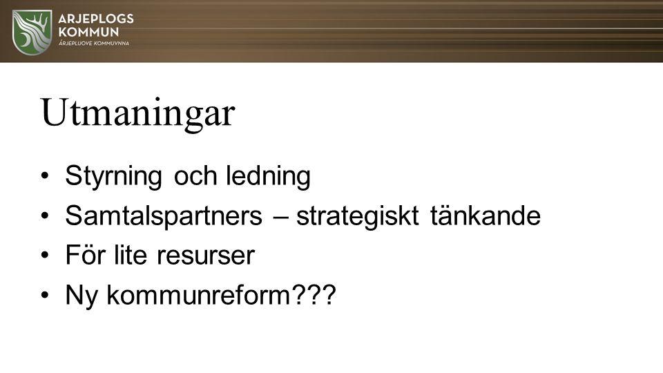 Utmaningar Styrning och ledning Samtalspartners – strategiskt tänkande För lite resurser Ny kommunreform???