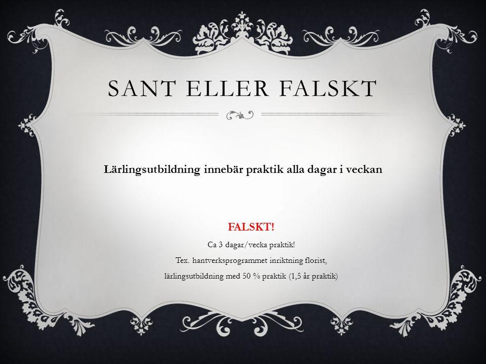 SANT. En riksrekryterande utbildning som elever från hela Sverige kan söka till.