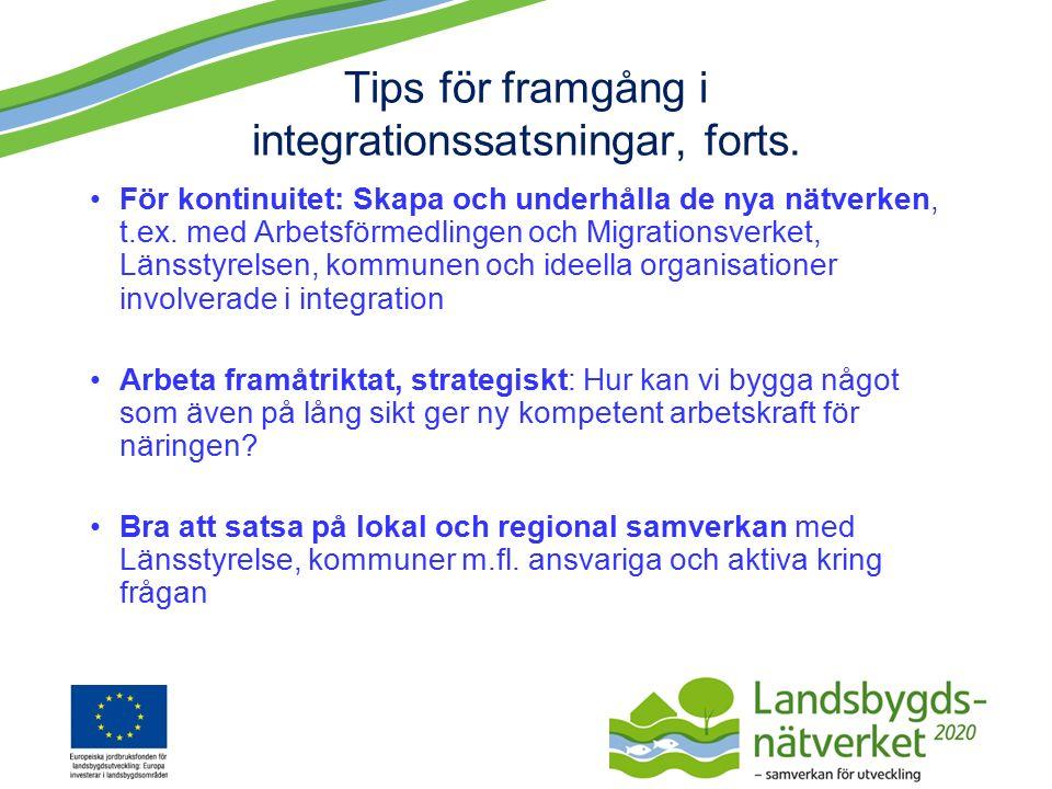 Tips för framgång i integrationssatsningar, forts.