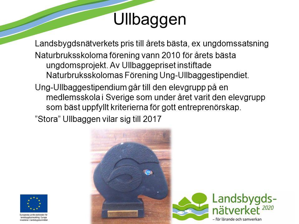 Ullbaggen Landsbygdsnätverkets pris till årets bästa, ex ungdomssatsning Naturbruksskolorna förening vann 2010 för årets bästa ungdomsprojekt.