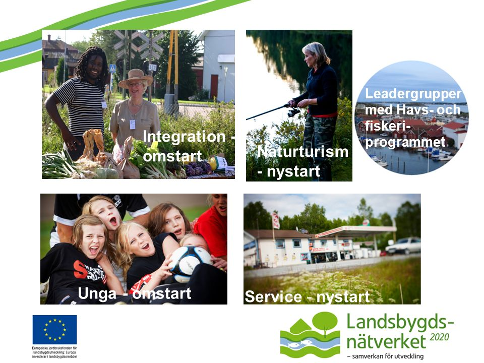 Leadergrupper med Havs- och fiskeri- programmet Service - nystart Integration - omstart Naturturism - nystart Unga - omstart