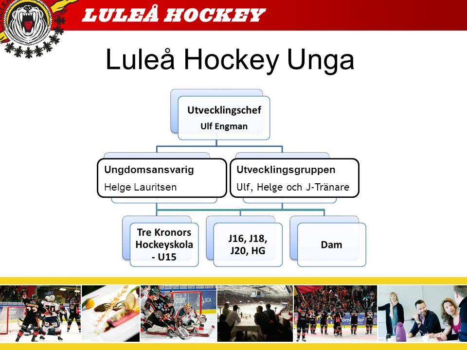 Vad kan man förvänta sig av Luleå Hockey Unga.