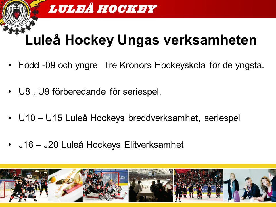 Ungdomspolicy Luleå Hockey U8-9 Verksamheten syftar till att utbilda barnen i ishockeyns grundfärdigheter.