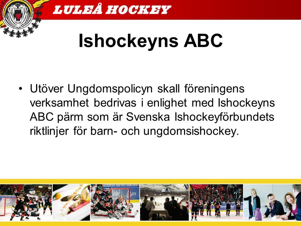 Träningsavgifter, medlemsavgifter Luleå Hockey har som målsättning att ha så låga träningsavgifter som möjligt så att alla ska kunna ha råd att spela ishockey.